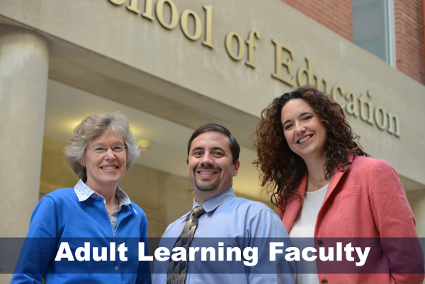 Adult learning faculty